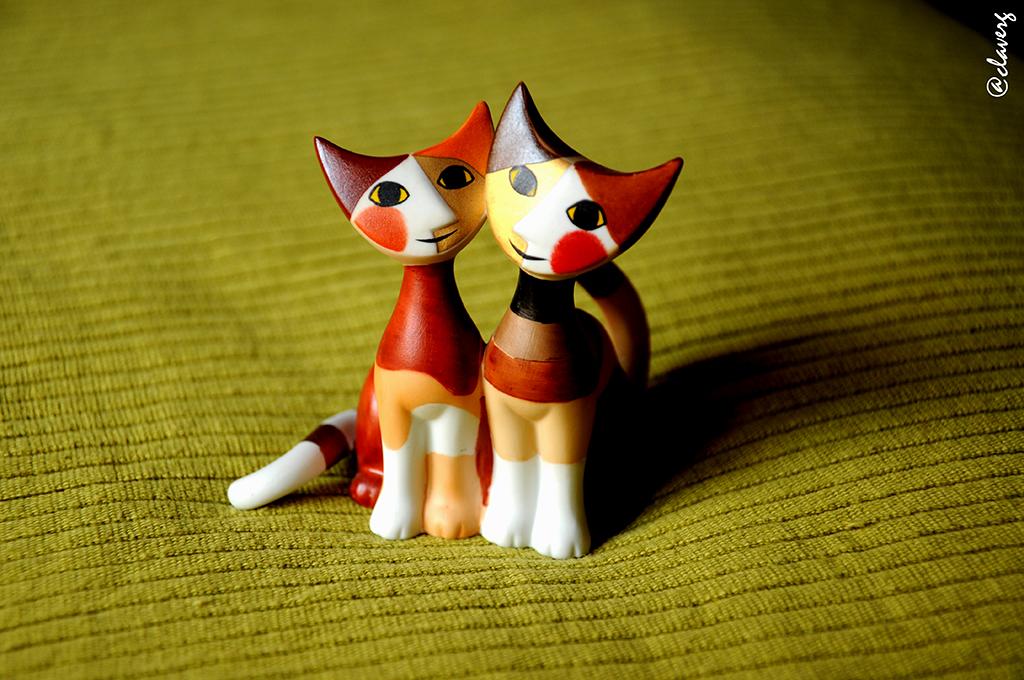 @claverg gatos enamorados